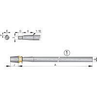 Vetus Niro-Welle mit Hutmutter L=1500mm,Ø25mm